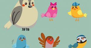 Kuşlar Meclisi