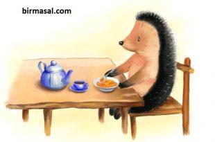 Yemek Yemeyi Seven Kirpi